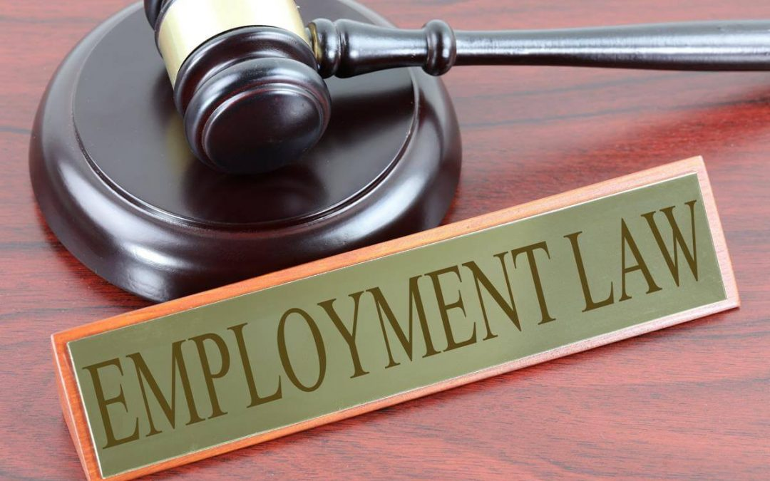 Questions on Employment Law
